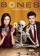 кости 3 сезон содержание серий